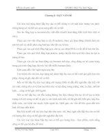 CƠ SỞ LÝ THUYẾT CỦA CÁC PHƯƠNG PHÁP XÁC ĐỊNH