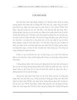 Một số công cụ chứng khoán phái sinh và khả năng áp dụng thị trường chứng khoán phái sinh ở Việt Nam