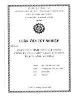 405 Phân tích tình hình tài chính công ty TNHH Việt Nam Gạch Men Thạch Anh (Vicera)