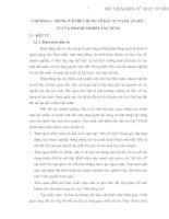 PHÂN TÍCH DỰ ÁN ĐẦU TƯ MUA SẮM MÁY MÓC THIẾT BỊ THI CÔNG ĐƯỜNG BỘ CỦA CÔNG TY CTGT 116