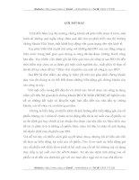 TỔNG QUAN VỀ THỊ TRƯỜNG CHỨNG KHOÁN VIỆT NAM VÀ THỰC TRẠNG CÁC CÔNG TY SAU PHÁT HÀNH LẦN ĐẦU Ở VIỆT NAM
