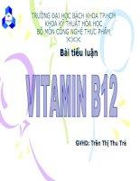 Vitamin B2, và tác dụng của vitamin B2 đối với sức khỏe