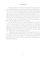 Tìm hiểu và nghiên cứu các văn bản quy phạm pháp luật do Uỷ ban nhân dân thành phố Vinh ban hành.