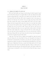 Đánh giá hàm lượng kim loại nặng (As, Cd, Pb, Cu, Zn) trong môi trường đất tại làng nghề đúc nhôm, chì Văn Môn – Yên Phong - Bắc Ninh