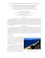 các nguyên lý thu gom và cơ cấu máy thu gom rác trên bãi biển Đà Nẵng
