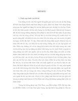 Diện và hàng thừa kế theo pháp luật dân sự Việt Nam