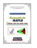 Sáng kiến kinh nghiệm ứng dụng phần mềm maple trong dạy học môn toán