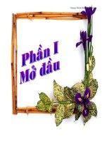 Làm thế nào để vận dụng và thiết kế trao đổi học tập Tiếng Việt 5 một cách hiệu quả