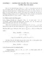 nhóm con chuẩn tắc của nhóm tuyến tính ổn định