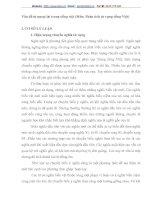 Vấn đề từ ngoại lai trong tiếng việt (Môn: Phân tích từ vựng tiếng Việt)