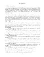 Mặt trận Việt Minh và những phong trào đấu tranh giải phong dân tộc từ 1941- 1945