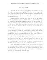VAI TRÒ CỦA NGƯỜI PHỤ NỮ TỈNH YÊN BÁI TRONG CÔNG VIỆC GIA ĐIÌNH HIỆN NAY