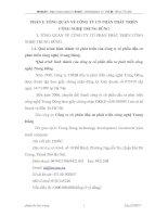 ĐÁNH GIÁ VỀ THỰC TRẠNG TỔ CHỨC KẾ TOÁN CỦA CÔNG TY CỔ PHẦN CÔNG NGHỆ TRUNG DŨNG