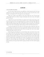 Một số biện pháp nhằm nâng cao hiệu quả của việc khai thác khách du lịch nội địa tai công ty cổ phần thương mại và Du lịch quốc tế Việt Nam