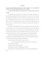 QUÁ TRÌNH HÌNH THÀNH VÀ PHÁT TRIỂN CỦA CHI NHÁNH CÔNG TY VẬT LIỆU ĐIỆN VÀ DỤNG CỤ CƠ KHÍ