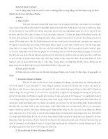 phân tích, so sánh và chỉ ra những điểm tương đồng và khác biệt trong sự hình thành các tổ chức tội phạm Mafia