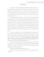 GIẢI PHÁP THÚC ĐẨY ĐẦU TƯ PHÁT TRIỂN CƠ SỞ HẠ TẦNG GIAO THÔNG NÔNG THÔN VIỆT NAM TỪ NAY - 2010