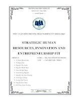 strategic human resources. innovation and entreprepreneurship fit