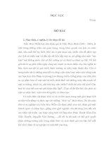 """tìm hiểu về nhân vật lịch sử Trần Thúc Nhẫn(1841 – 1883)"""""""