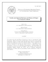Textile and Apparel Barriers and Rules of Origin in a Post-ATC World