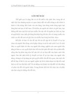 NHỮNG NỘI DUNG CƠ BẢN VỀ LỰA CHỌN TỐI ƯU CỦA NGƯỜI TIÊU DÙNG