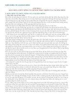 BẢN CHẤT, CHỨC NĂNG VÀ LỊCH SỬ PHÁT TRIỂN CỦA TÁI BẢO HIỂM