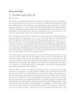 Vai trò của Báo cáo NLCT Việt Nam so với các báo cáo và nghiên cứu khác