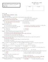 Đề kiểm tra môn Vật lý khối 11