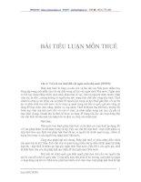 Bài tiểu luận môn thuế
