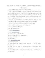 Tổng quan về công ty chứng khoán công thương Việt Nam