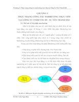 CHƯƠNG 3 THỰC TRẠNG CÔNG TÁC MARKETING TRỰC TIẾP TẠI CÔNG TY TNHH TM- DV- TC TÂN THANH HẢI