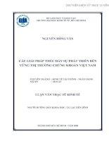 Các  giải pháp phát triển bền vững thị trường chứng khoán Việt Nam