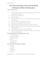 Các bước xây dựng, triển khai hệ thống thương mại điện tử Mekongbay