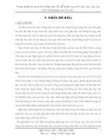 PHƯƠNG PHÁP SỬ DỤNG HỆ THỐNG CÂU HỎI ĐỂ PHÁT HUY TÍCH CỰC CHO HỌC SINH TRONG DẠY HỌC LỊCH SỬ