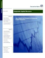 corporate capital structure full paper
