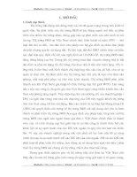 GIẢI PHÁP NHẰM PHÁT TRIỂN THỊ TRƯỜNG NHÀ CHO THUÊ TẠI VIỆT NAM TRONG GIAI ĐOẠN VIỆT NAM HIỆN NAY