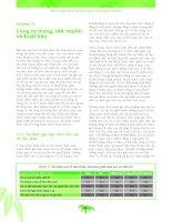 Phần II chương 10 Điều tra quốc gia về vị thành niên và thanh niên Việt Nam
