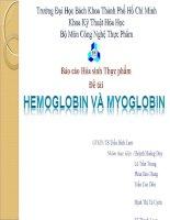 HEMOGLOBIN VÀ MYOGLOBIN