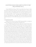 LỊCH SỬ HÌNH THÀNH VÀ PHÁT TRIỂN CỦA CÔNG TY TNHH NHỰA COMPOSITE VIỆT Á