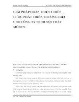 GIẢI PHÁP HOÀN THIỆN CHIẾN LƯỢC PHÁT TRIỂN THƯƠNG HIỆU CHO CÔNG TY TNHH NỘI THẤT MÔĐUN