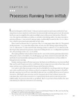 Processes Running from inittab