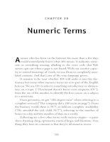 Numeric Terms