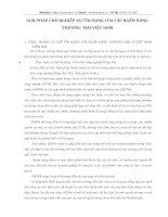 GIẢI PHÁP CHO NGHIỆP VỤ TÍN DỤNG CỦA CÁC NGÂN HÀNG THƯƠNG  MẠI VIỆT NAM