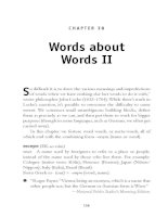 Words about Words II