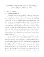 CƠ SỞ LÝ LUẬN CHUNG VỀ NGÂN HÀNG THƯƠNG MẠI VÀ HOẠT ĐỘNG TÀI CHÍNH CỦA NHTM