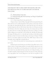 GIẢI PHÁP DUY TRÌ VÀ PHÁT TRIỂN THỊ TRƯỜNG TIÊU THỤ SẢN PHẨM TẠI CÔNG TY CỔ PHẦN BAO BÌ VÀ MÁ PHANH VIGLACERA