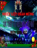 Bai 29-Hap thu chat dinh duong va thai phan