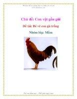 Chủ đề: Con vật gần gũi - Đề tài: Bé vẽ con gà trống - Nhóm lớp: Mầm