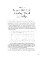 Beyond WSE 2.0 - Looking Ahead to Indigo