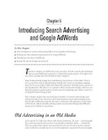 Introducing Search Advertising and Google AdWords